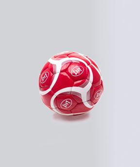 Picture of Soccer ball, made of real leather