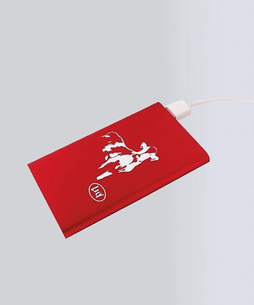 Image sur Batterie de secours 2.0